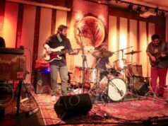 Beau Sasser performs with the Medicinal Purpose at Hawks and Reed in Greenfield, MA - photo by Kelly D