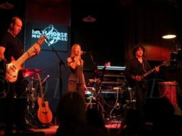 Security Project at the Iron Horse on November 7th, 2017